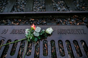 Never Again: Auschwitz 70 years later